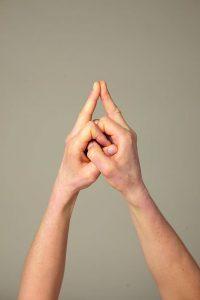 Das Mudra wird auch Wurzelchakra-Geste genannt.